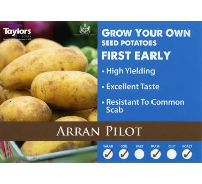 Taster Packs Arran Pilot Potatoes NOW HALF PRICE