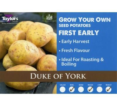 Taster Packs Duke Of York Potatoes NOW HALF PRICE