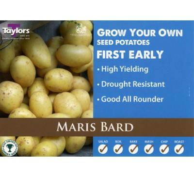 Taster Packs Maris Bard Potatoes NOW HALF PRICE