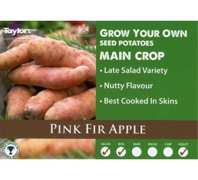 Taster Packs Pink Fir Apple Potatoes NOW HALF PRICE