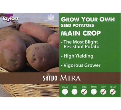 Taster Packs Sarpo Mira Potatoes NOW HALF PRICE