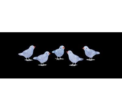 16cm 5pc Acrylic Birds with LEDs White LEDs