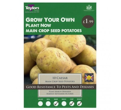 Taster Packs Caesar Potatoes