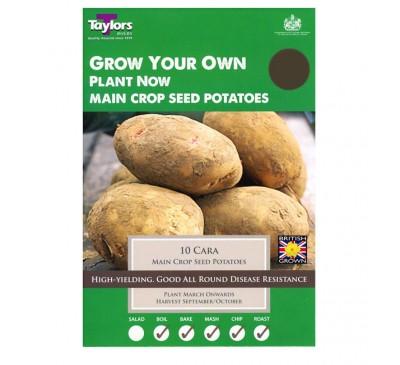 Taster Packs Cara Potatoes NOW HALF PRICE