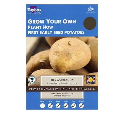 Taster Packs Casablanca Potatoes