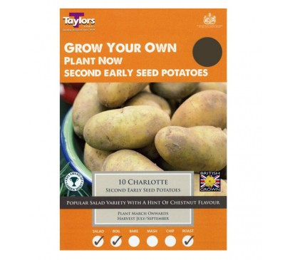 Taster Packs Charlotte Potatoes