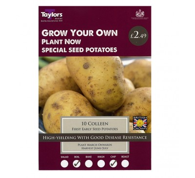 Taster Packs Colleen Potatoes