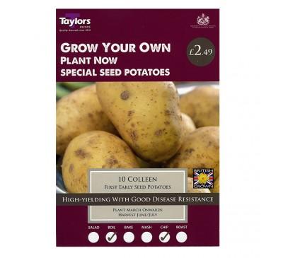 Taster Packs Colleen Potatoes NOW HALF PRICE