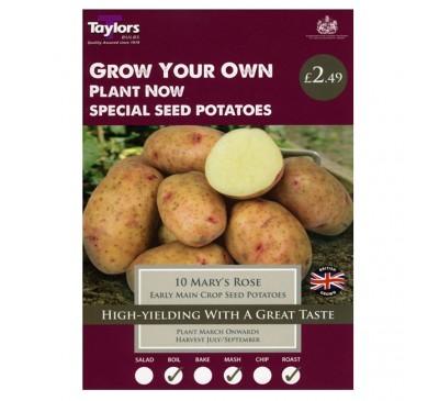 Taster Packs Potato Marys Rose