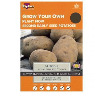 Taster Packs Nicola Potatoes NOW HALF PRICE
