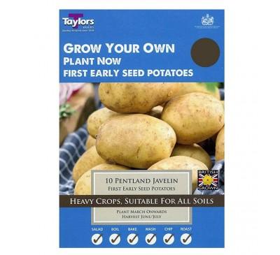 Taster Packs Pentland Javelin Potatoes NOW HALF PRICE