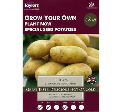 Taster Packs Potato Scapa