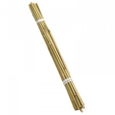 Bamboo Canes 90cm bundle of 20