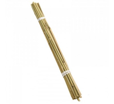 Bamboo Canes 120cm bundle of 20