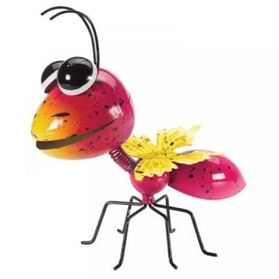 Hanging on Jazee Ant