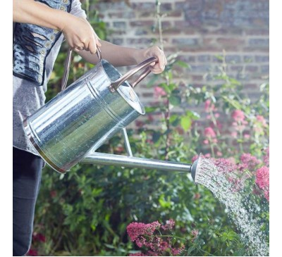 Watering Can - Galvanised 9 Litre