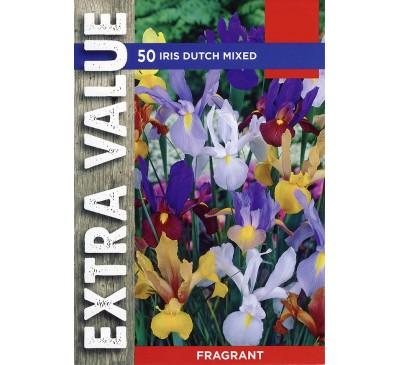 Extra Value Iris Dutch Mixed