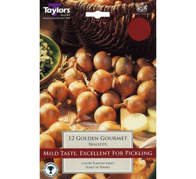 Pre-Packed Shallots Golden Gourmet 7-14
