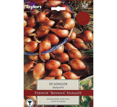 Pre-Packed Shallots Longor French 15-35