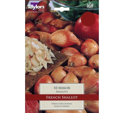 Pre-Packed Shallots Mikor French15-40