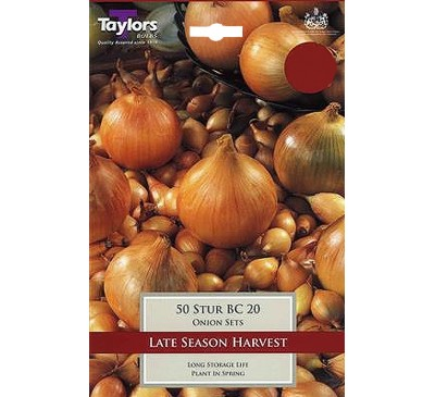 Pre-Packed Onions Stur Bc 20 14-21