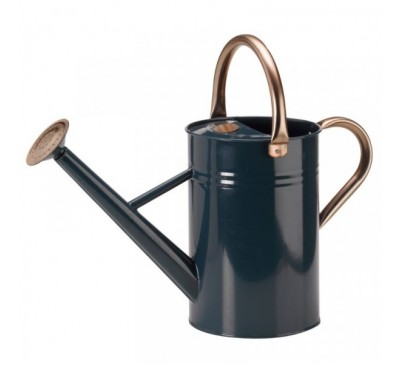 GroZone 4.5L Watering Can Blue