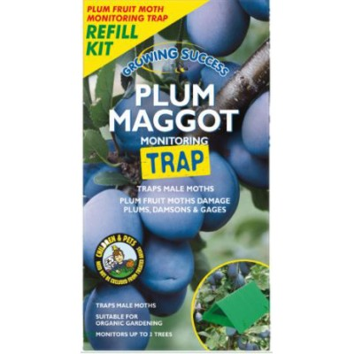 Growing Success Plum Maggot Trap refill pack