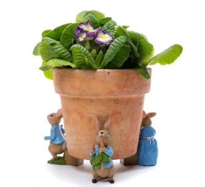 Potty Feet Beatrix Potter Set 1