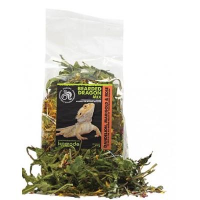 Komodo Bearded Dragon Mix 100g