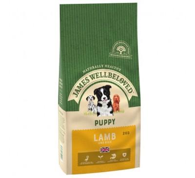 James Wellbeloved Lamb & Rice Puppy 2kg