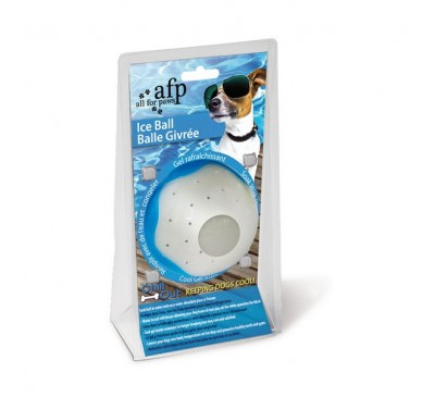 All for Paws Chill Out Ice Ball Large