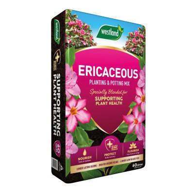 Westland Ericaceous Compost 60 Litre